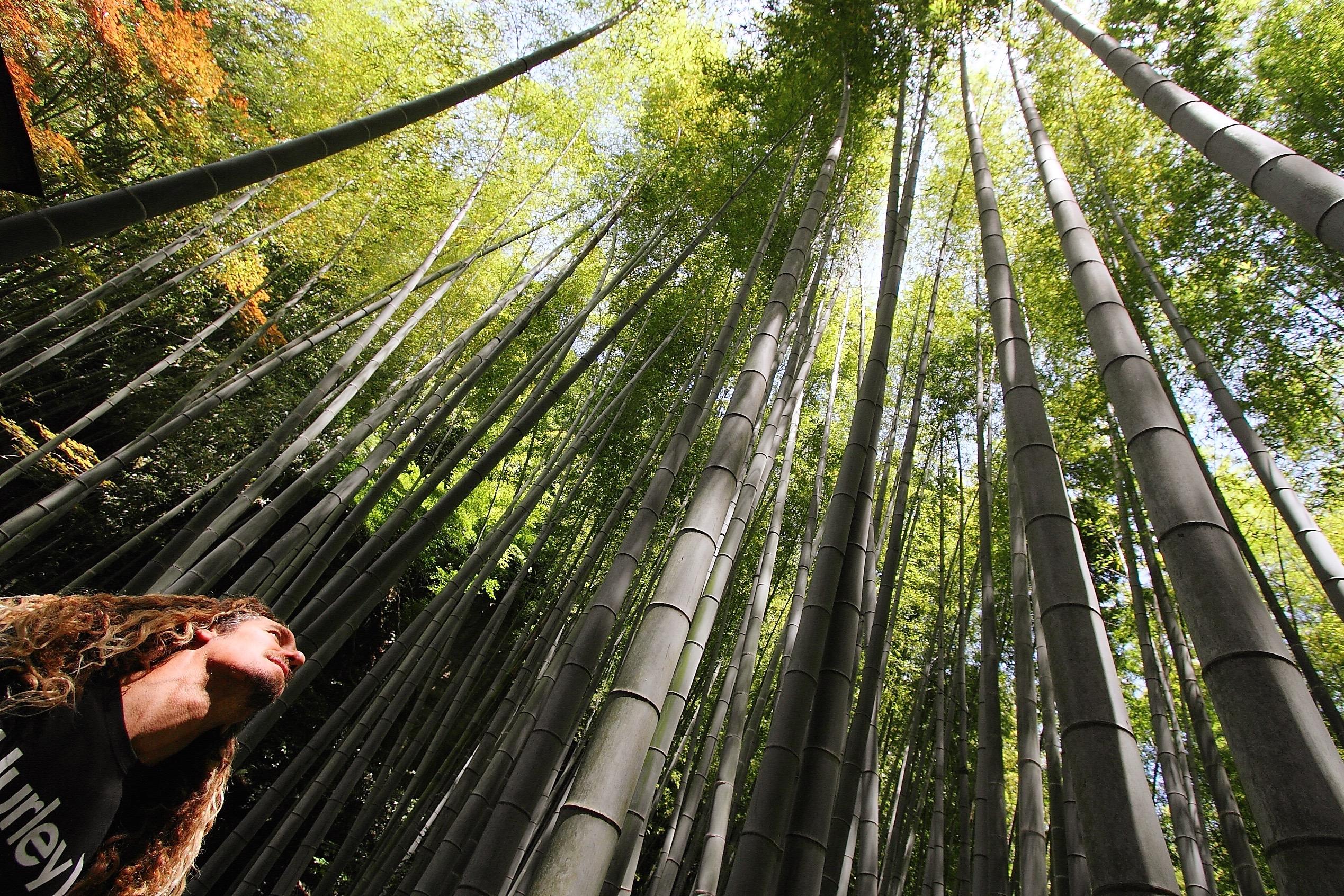 福島と湘南をつなぐチャリティー写真展